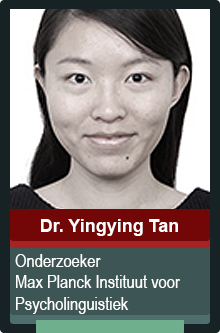 author_template_yingying