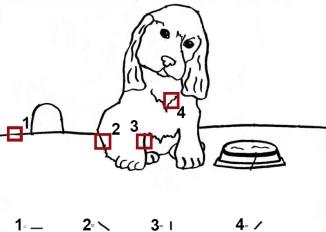 dog-lines
